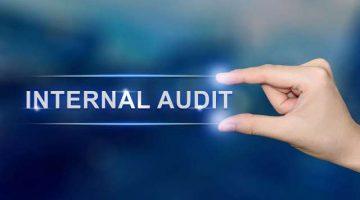 internal_audit_pichet_w